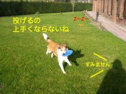 2008030119.jpg