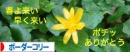 2008030613.jpg