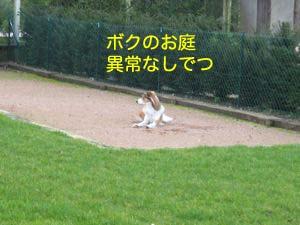 2008031111.jpg
