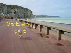 2008032003.jpg