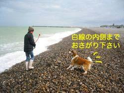 2008032005.jpg