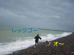2008032006.jpg
