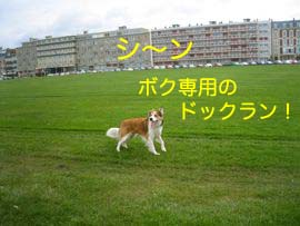 2008032011.jpg