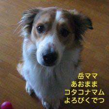 2008032612.jpg