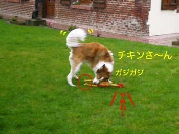2008032701.jpg