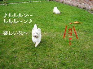 2008032706.jpg