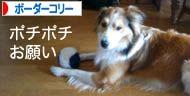 2008033106.jpg