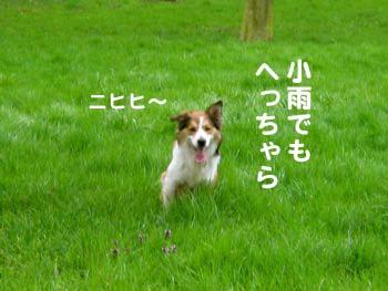 2008040901.jpg