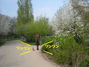 2008041205.jpg