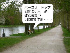 2008041504.jpg