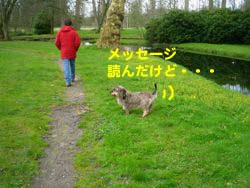 2008041515.jpg