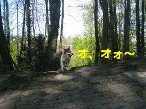 2008041604.jpg