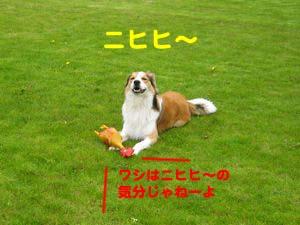2008042303.jpg
