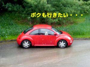 2008042908.jpg