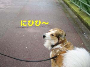 2008043014.jpg