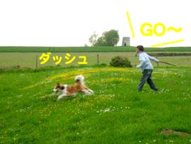 2008050513.jpg