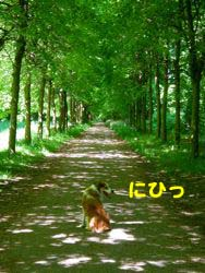 2008050805.jpg