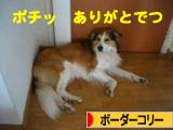 2008050815.jpg
