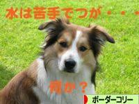 20080608101.jpg