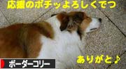 2008061409.jpg