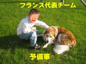 2008061511.jpg