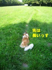 2008061808.jpg