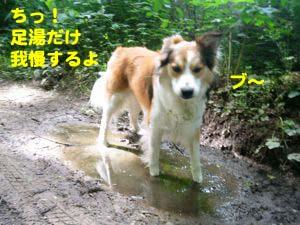 2008062413.jpg