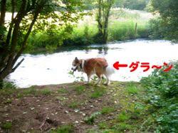 2008062609.jpg