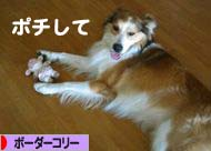 2008062713.jpg