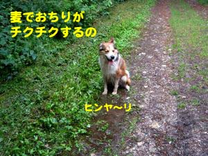 2008071208.jpg