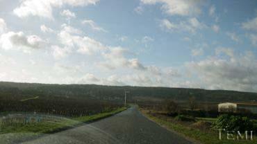 2008122002.jpg