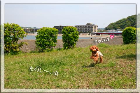 _MG_4467.jpg