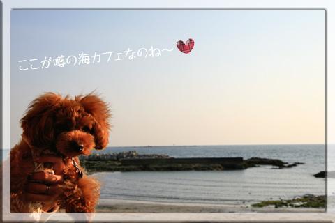 _MG_4633.jpg