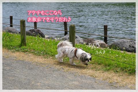 _MG_4821.jpg