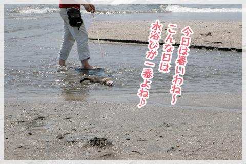 _MG_5815.jpg