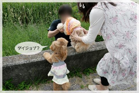 _MG_6081.jpg