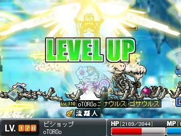 09-0513-sei-178lv.jpg