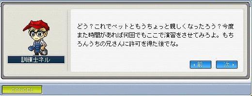 06041211.jpg