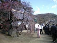 20080224/不老園 撮影会