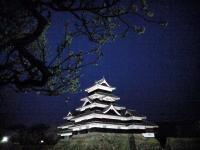 20080412/松本城 夜桜01