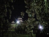20080412/松本城 夜桜04