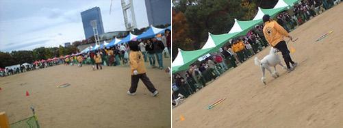 11-2-oosakazyo-1.jpg