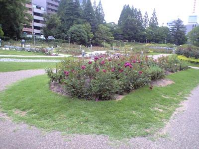 けさのうつぼ公園