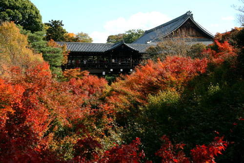 東福 通天橋の紅葉