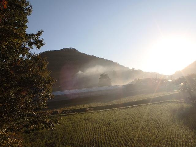 霧の朝111018