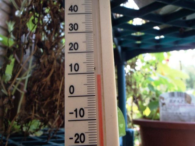 温度計111020