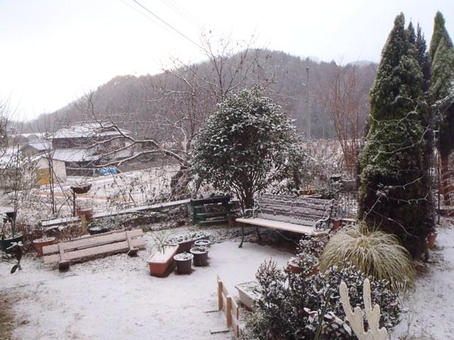 今朝の雪景色111226