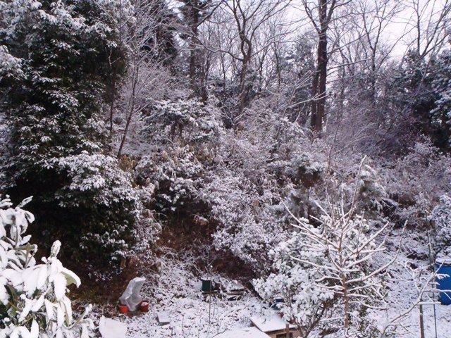 雪景色2120105