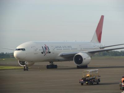 JAL B777