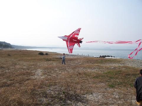 kite 769